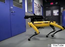 كيف تحوَّل روبوت أصفر بـ4 أرجل إلى نجم يوتيوب؟ ربما لأدبه؟ شاهد