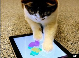 Ipad Art By Cats