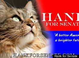 Hank For Senate