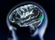 Porn-Brain Study: Erotic Movies Make Brain Regions 'Shut Down'