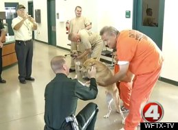 Dogs Prison Adopt Human Society Florida Therapy