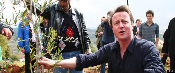 DAVID CAMERON GREEN RENEWABLE