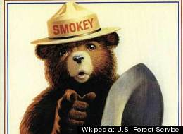 Smokey Bear Space