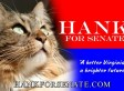 Goodbye To Hank: Beloved Virginia Cat Who Ran For U.S. Senate Dies