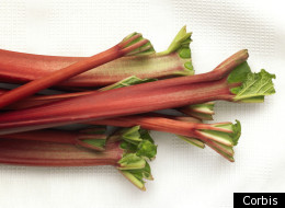 CONTEST: Send Us Your Best Rhubarb Recipes