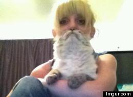 Meet... The Cat Beard Lady