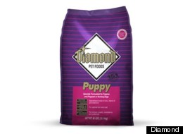 Diamond Pet Food Recall