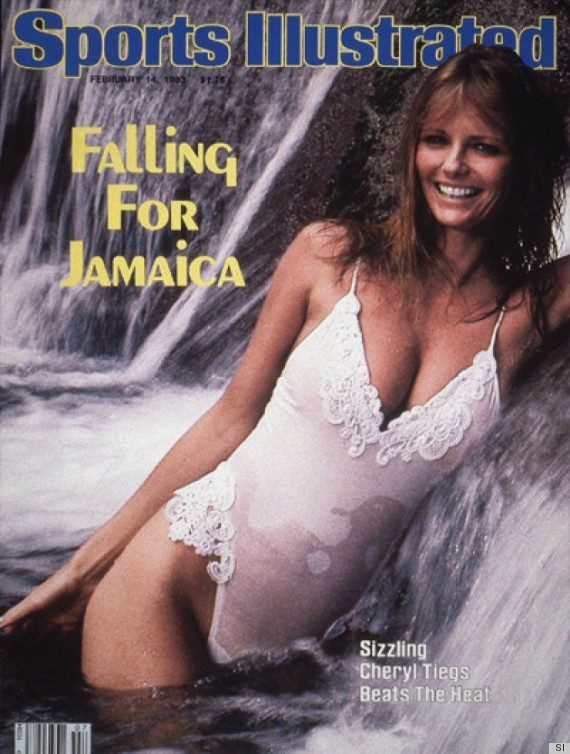 david cameron cheryl tiegs