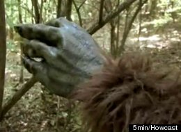 Shoot Bigfoot In Texas? It's Legal!