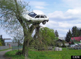 LOOK: Angry Neighbouts Put Boy Racer's Car On Top Of A Tree