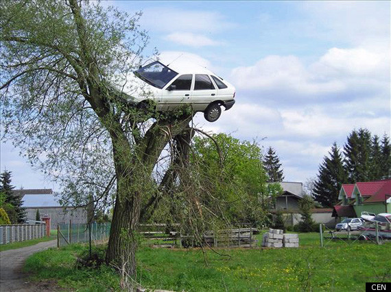 Picture Of The Day Neighbours Put Boy Racer S Car In Tree