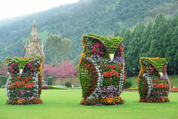 Amazing Gardens The Giant Flower Owls In Nantou County
