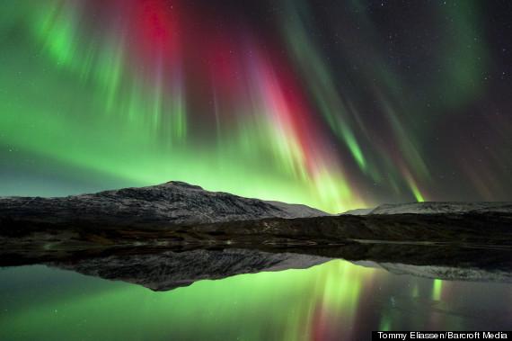 tommy eliassen aurora