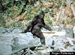 Is Bigfoot Possibly an Alien Entity?
