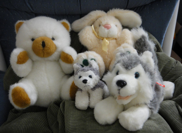 organize stuffed animals