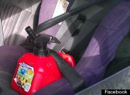 Seatbelt Gas Can Enforcement