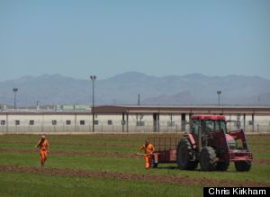 prison laborers