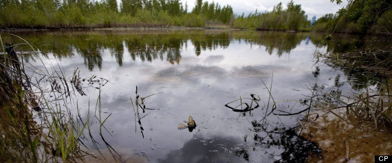 ALBERTA OIL SPILL PLAINS MIDSTREAM