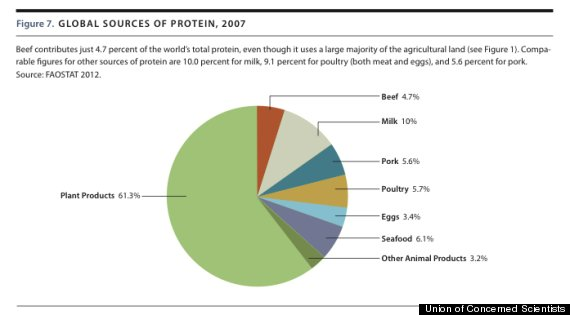 global sources of protein