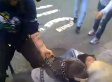 Pit Bull Attacks Tiny Dog In New York City; Should Pit Bulls Be Kept As Pets? (VIDEO) (POLL)