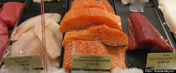 FARMED FISH WORLD DEMAND