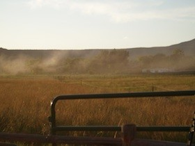 pesticide fog
