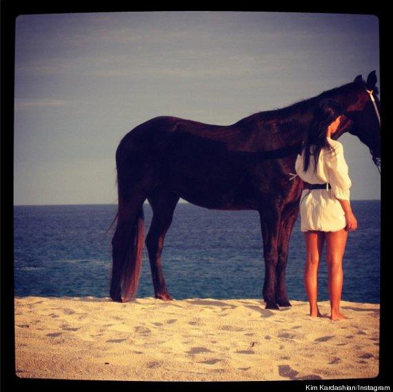 kim kardashian horse