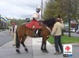 Vincent Gabriel Kirouac Spreads Chivalry Across Canada On Horseback, Dressed As Knight