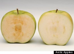 Non Browning Apple Arctic Apples