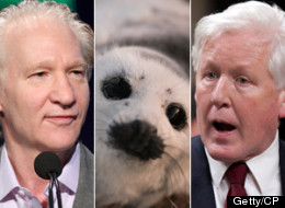 Bob Rae Bill Maher Seal Hunt
