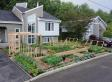 Illegal Front Yard Garden: Canadian Couple's Kitchen Garden Targeted By Authorities [UPDATED]