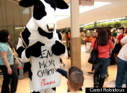 Chick Fil A Gay Pride
