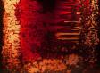 Artist Jordan Eagles Displays Blood Art In 'Hemofields' Exhibition At Krause Gallery (PHOTOS, VIDEO)