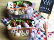 Bento Box Lunches For Kids (PHOTOS)