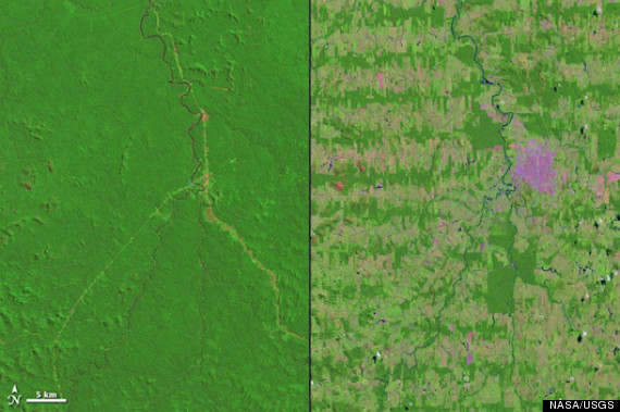 amazon deforestation 2012