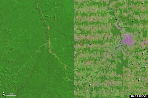 amazon deforestation 2012