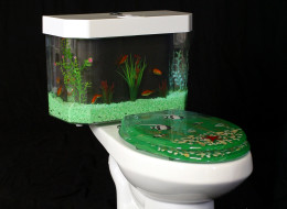 Weird Toilets Around The World