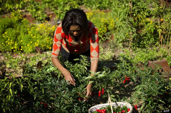 michelle obama potager