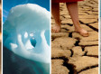 Climate Change: Only 2 Per Cent of Canadians Don't Believe The Earth Is Warming Says Survey