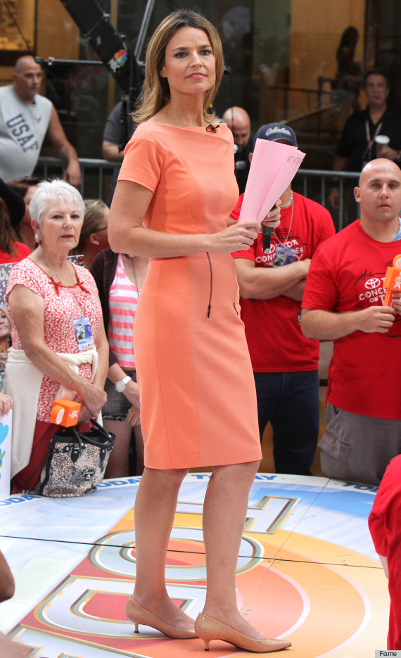 Savannah Guthrie Wears Awkward Dress On 'Today' Show (PHOTO)