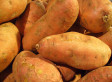 Supercharged Sweet Potato Might Be The Key Against Vitamin A Deficiency In Africa