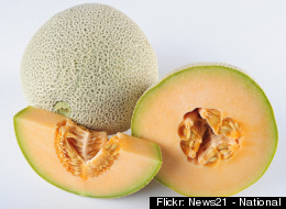 Cantaloupe Contamination