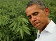 Obama Marijuana Legalization Stance Rebutted By Failed Drug War