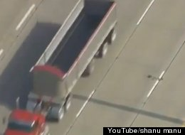 WATCH: Duck And Her Ducklings Death-Defying Highway Crossing