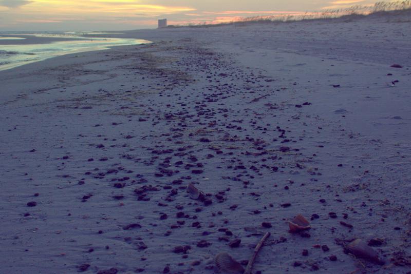 arballs on beach at bon secour national wildlife