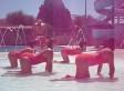 'Lifeguard Style,' Gangnam Spoof Video, Got 14 California Lifeguards Fired (VIDEO)