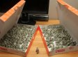 Man Pays $137 Traffic Ticket With 137 Origami Pigs In Donut Boxes (PHOTOS, VIDEO)