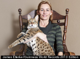 Tallest House Cat In The World