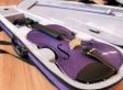 Camille Cruz, Tibbetts Middle School Student, Banned From Using Purple Violin In Orchestra