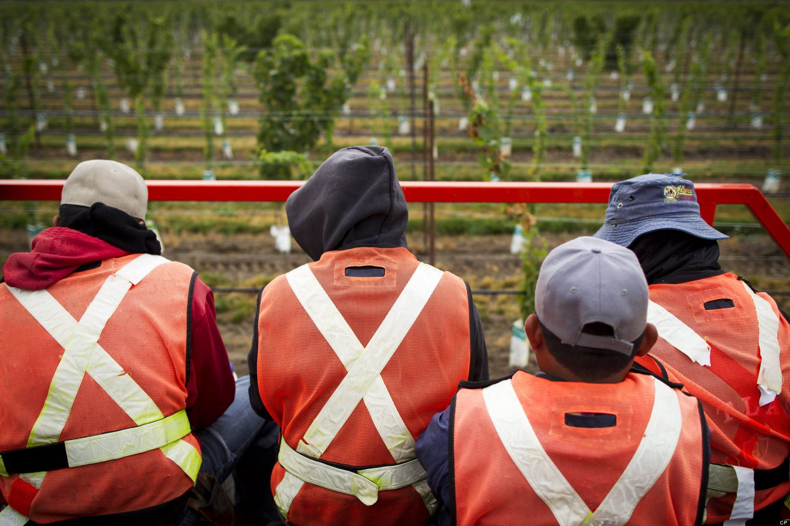 exploitation among migrant labour It argues that such a viewpoint fails to recognise the costs to migrant workers of  remitting many of these workers reside in the industrialised countries of the.
